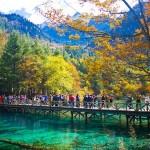Cửu Trại Câu – Phần 1,Video | Mùa thu nơi thiên đường hạ giới