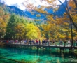 Cửu Trại Câu – Phần 2 | Mùa thu nơi thiên đường hạ giới