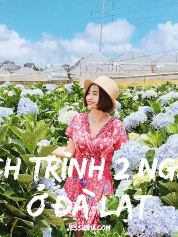 Việt Nam   Lịch trình du lịch tự túc Đà Lạt chỉ với 2 triệu cho cả gia đình , xuất phát từ Sài Gòn